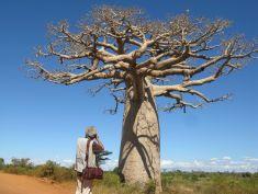 Sac Photo en cuir - pierrot Men, Madagascar 6